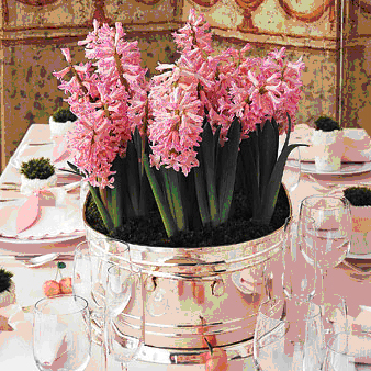 One Fine Day Wedding hyacinth