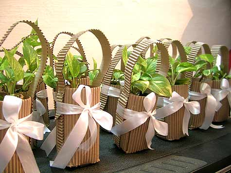 One Fine Day Wedding plant favors